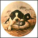 Dog Tired - The Springer Spaniel