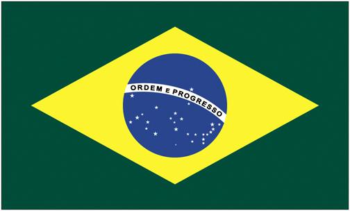 <big>Brazil Flag</font></big>