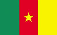 <big>Cameroon Flag</font></big>