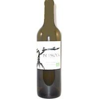 2010 Bedrock Kick Ranch Sauvignon Blanc