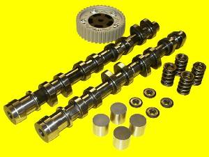 Cat Cams - Honda L15 Race Camshafts (Fit/Jazz)