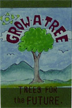 Grow a Tree Kit