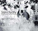 Sanctuary &#8211; Portraits of Rescued Farm Animals by Sharon Lee Hart