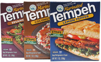 Marinated Tempeh Strips by Turtle Island Foods